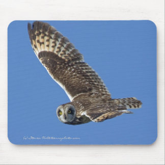 Short-eared Owl in Flight Mouse Pad