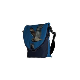 Short-eared Owl in flight on shoulder  bag