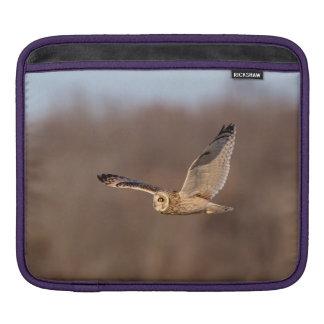 Short-eared owl in flight sleeve for iPads