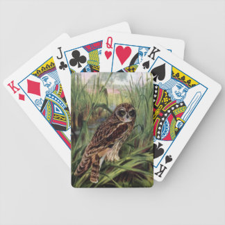 Short-eared Owl in Wetlands Bicycle Playing Cards