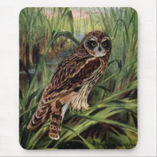 Short-eared Owl in Wetlands Mouse Pad