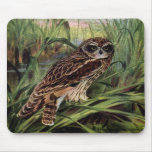 Short-eared Owl in Wetlands Mouse Pads