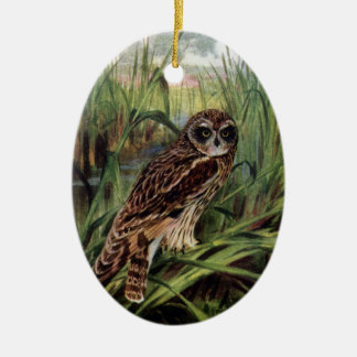 Short-eared Owl in Wetlands Double-Sided Oval Ceramic Christmas Ornament