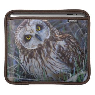 Short-eared Owl iPad Sleeve