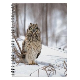 Short Eared Owl Notebooks