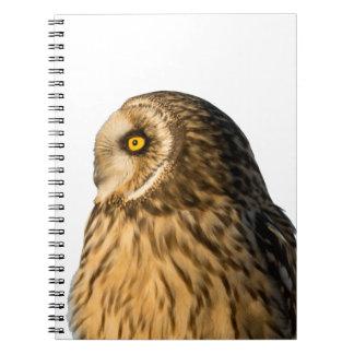 Short Eared Owl Spiral Note Books