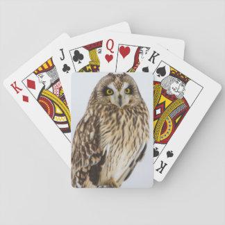 Short-eared Owl on fence post Poker Cards