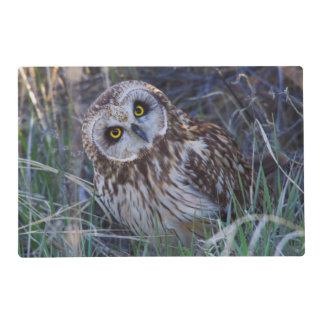 Short-eared Owl Placemat
