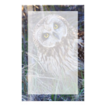 Short-eared Owl Stationery