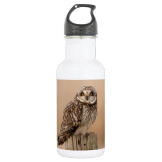 Short eared owl water bottle