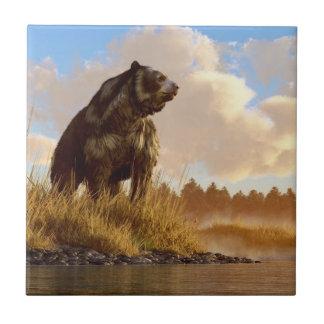 Short Faced Bear Ceramic Tile