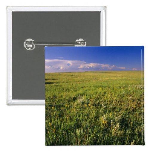 Short Grass Prairie in remote northeastern Pinback Button