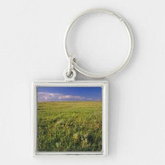 Short Grass Prairie in remote northeastern Keychain
