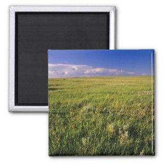 Short Grass Prairie in remote northeastern Magnet