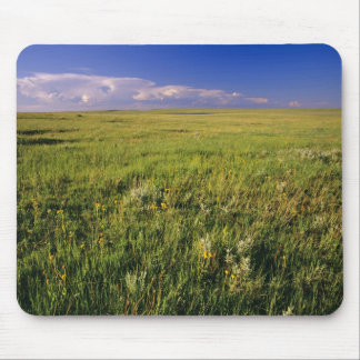 Short Grass Prairie in remote northeastern Mouse Pad