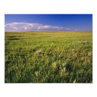 Short Grass Prairie in remote northeastern Photo Print