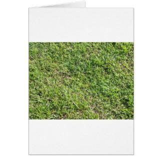 Short green grass greeting card
