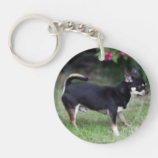 Short Haired Chihuahua Standing Double-Sided Round Acrylic Keychain