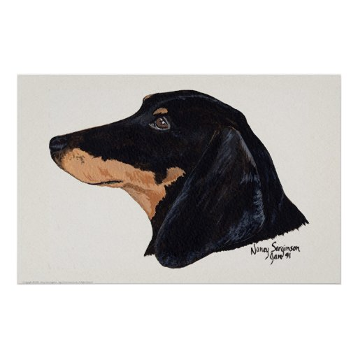 Short Haired, Dachshund, Acrylic Painting Posters