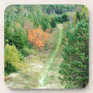 Short Hike Coasters