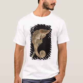 Short-horned chameleon(Calumma brevicornis) T-Shirt