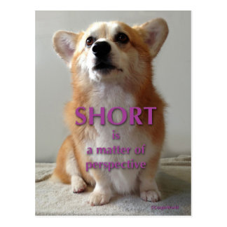 Short is a Matter of Perspective Cute Corgi Card