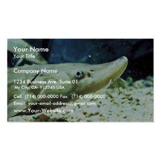 Short-nose Sturgeon Business Card