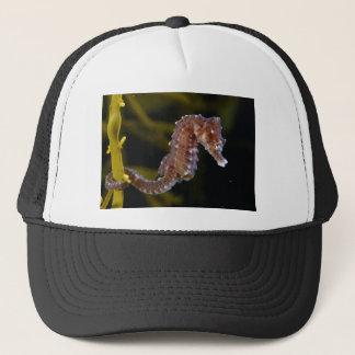 Short-snouted Seahorse Hippocampus hippocampus Trucker Hat