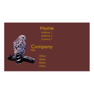 Short-tail Hawk Double-Sided Standard Business Cards (Pack Of 100)
