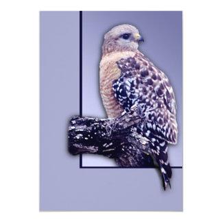 Short-tail Hawk Card