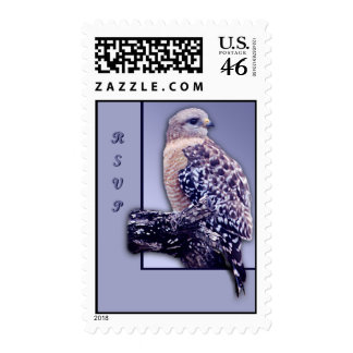 Short-tail Hawk Stamps