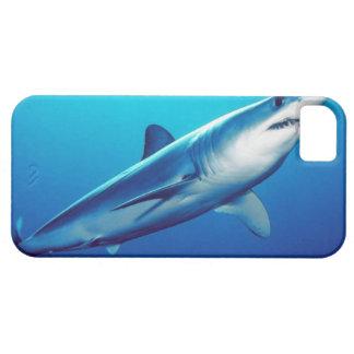 Shortfin Mako Shark iPhone SE/5/5s Case