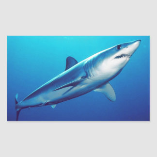 Shortfin Mako Shark Rectangular Sticker