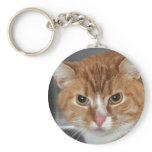 Shorthair Orange Tabby Cat Keychain