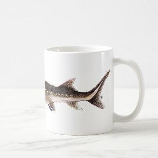 Shortnose Sturgeon - Acipenser brevirostrum Classic White Coffee Mug