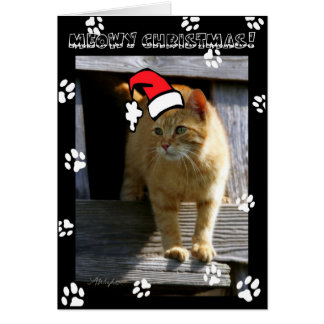 SHORTY5X7 christmas Greeting Card