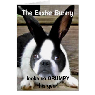 Shorty's 2011 Easter Card