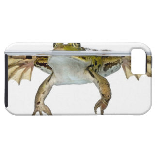Shot of a Edible frog surfacing in front of a iPhone 5 Case
