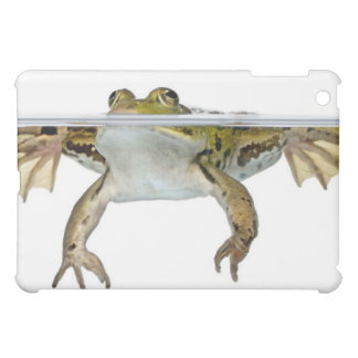 Shot of a Edible frog surfacing in front of a iPad Mini Case