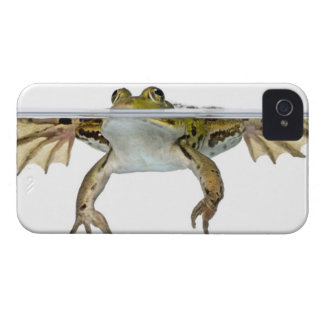 Shot of a Edible frog surfacing in front of a iPhone 4 Case