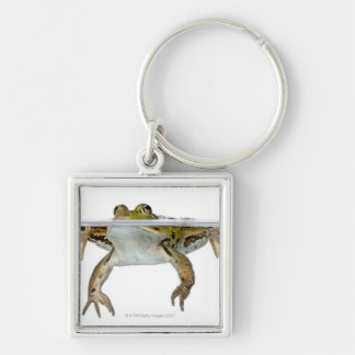 Shot of a Edible frog surfacing in front of a Keychain