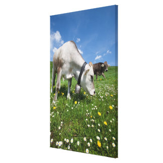 Shots were made by using a wide angle lens. canvas print