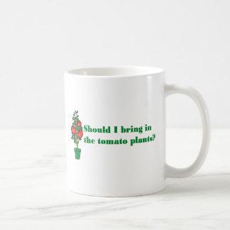 Should I bring in the tomato plants? Coffee Mug