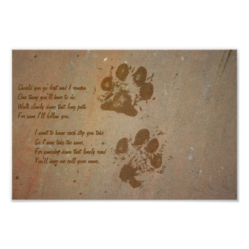 Should you go first, paw prints on stone Poster