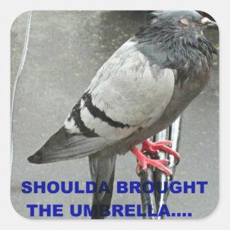 Shoulda trajo un paraguas pegatina cuadrada