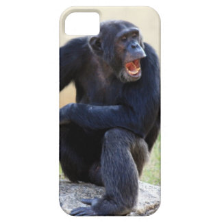 Shouting Chimp iPhone SE/5/5s Case
