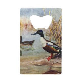 Shoveler Ducks Vintage Illustration Credit Card Bottle Opener