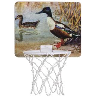 Shoveler Ducks Vintage Illustration Mini Basketball Hoops