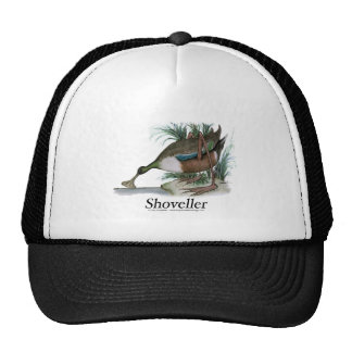 Shoveller duck, tony fernandes trucker hat