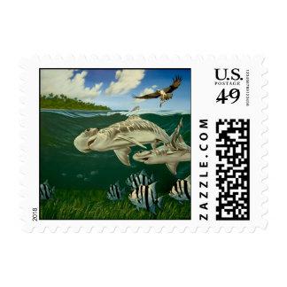 Shovelnose, Florida Bay Postage